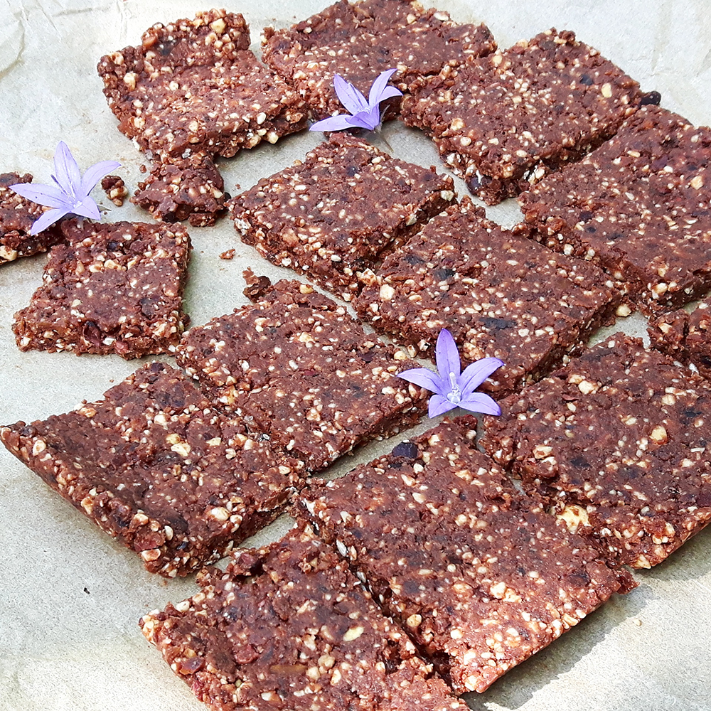 Raw cacao and cashew bars