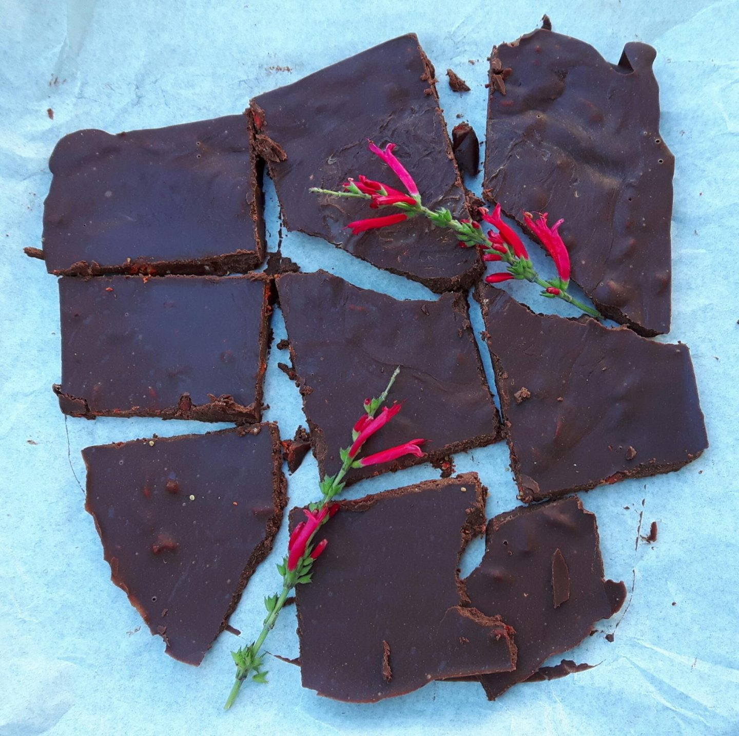 Raw goji chocolate